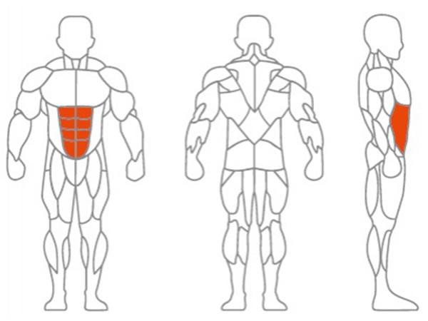 دستگاه بدنسازی کرانچ شکم مدل LDLS-010